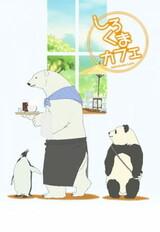Shirokuma Cafe